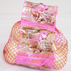 wholesale onion sets